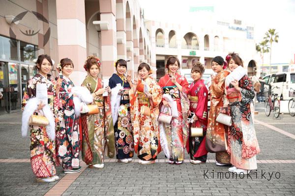 kikyo-k110.jpg